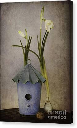 March Canvas Print by Priska Wettstein