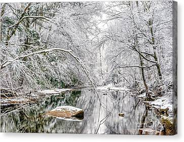 Canvas Print featuring the photograph March Snow Along Cranberry River by Thomas R Fletcher