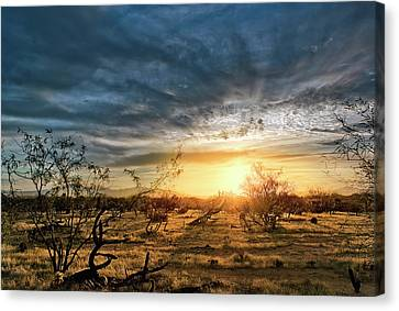 Canvas Print featuring the photograph March Sunrise by Lynn Geoffroy