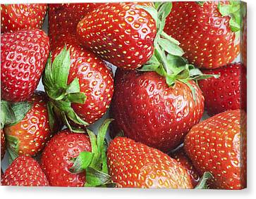 Canvas Print featuring the photograph Marco View Of Strawberries by Paul Ge