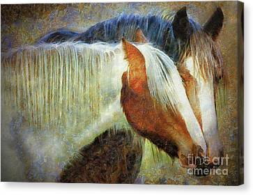 Mare And Filly Canvas Print by Sharon Kingston