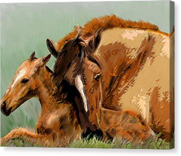 Bay Horse Canvas Print - Mare And Foal by Michele Avanti