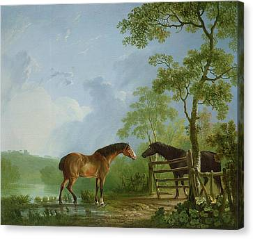 Mare And Stallion In A Landscape Canvas Print by Sawrey Gilpin