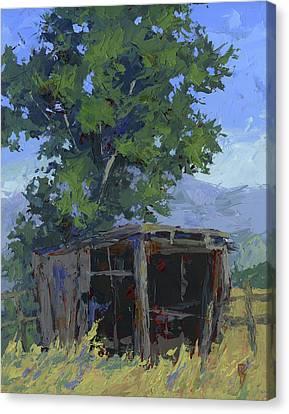 Marginal Shelter Canvas Print by David King