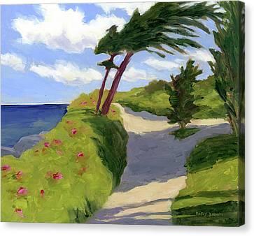 Marginal Way Path Canvas Print by Mary Byrom