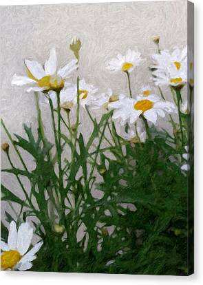Marguerites Canvas Print by Lutz Baar
