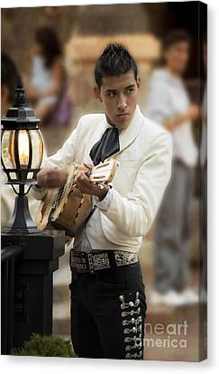 Mariachi Performer Canvas Print by Juli Scalzi