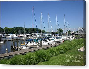 Marina On Black River Canvas Print