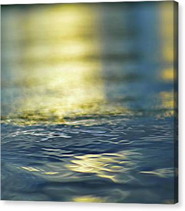 Gold Color Canvas Print - Marine Blues by Laura Fasulo