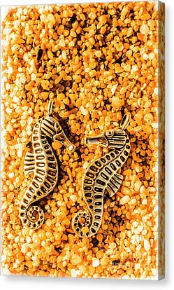Marine Seahorse Ocean Charms Canvas Print by Jorgo Photography - Wall Art Gallery