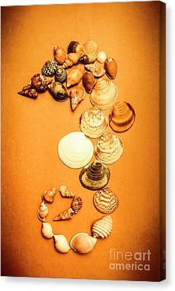 Seashell Art Canvas Print - Marine Seashell Seahorse Design by Jorgo Photography - Wall Art Gallery