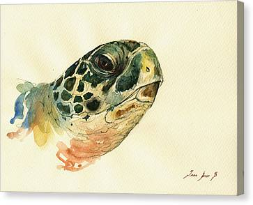 Marine Turtle Canvas Print by Juan  Bosco
