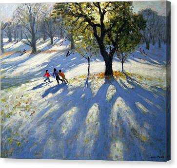 Markeaton Park Early Snow Canvas Print by Andrew Macara