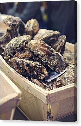 Raw Oyster Canvas Print - Market Fresh Oysters by Heather Applegate