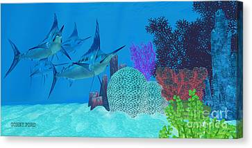 Marlin Looking For Prey Canvas Print by Corey Ford