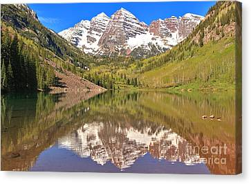 Maroon Bells Wilderness Reflections Canvas Print by Adam Jewell