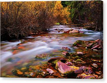 Autumn Canvas Print - Maroon Creek by Greg Norrell