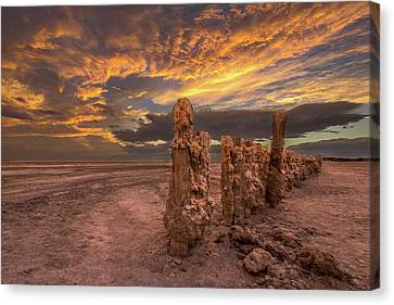 Mars Canvas Print by Peter Tellone