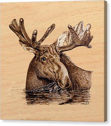 Marsh Moose Pillow/bag Canvas Print by Ron Haist