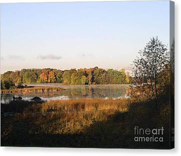 Marsh Morning Canvas Print by Mendy Pedersen