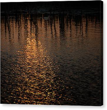 Marsh Sunrise Canvas Print