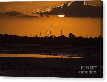 Marsh Sunset By Darrell Hutto Canvas Print