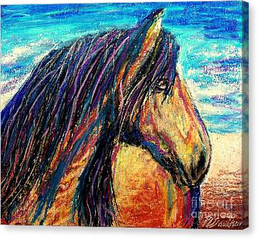 Marsh Tacky Wild Horse Canvas Print by Patricia L Davidson