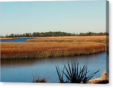 Marsh View Canvas Print by Rosanne Jordan