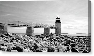 Canvas Print featuring the photograph Marshall by Corinne Rhode