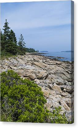 Marshall Ledge Looking Downeast Canvas Print
