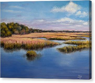 Marshland In Florida Canvas Print