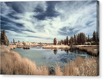 Marshlands In Washington Canvas Print by Jon Glaser