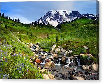 Lupine Canvas Print - Martha Creek Wildflowers by Mike  Dawson