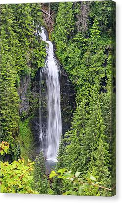 Martha Falls Mt Rainier Canvas Print by Sam Amato