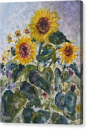 Martha's Sunflowers Canvas Print