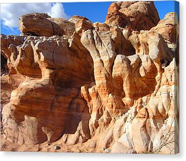 Martian Cliffs Canvas Print by Silvie Kendall