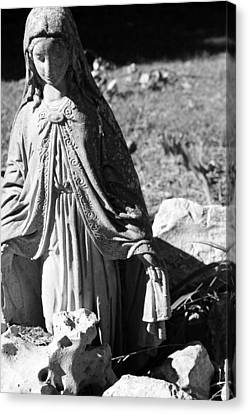 Mary Canvas Print by Gina  Zhidov