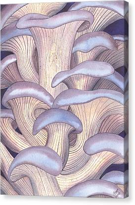 Mary Mushrooms Canvas Print by Catherine G McElroy