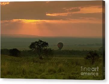 Canvas Print featuring the photograph Masai Mara Balloon Sunrise by Karen Lewis