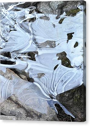 Canvas Print featuring the photograph Ice Mask Abstract by Glenn Gordon