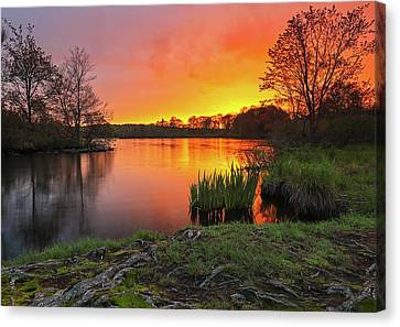 Massachusetts Color Canvas Print by Juergen Roth