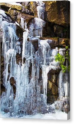 Massive Icicles Canvas Print by Garry Gay