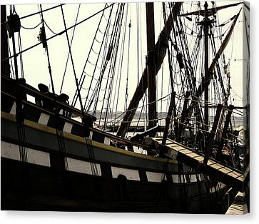 Master And Commander V2 Canvas Print by Douglas Barnard