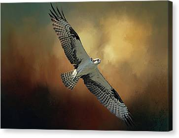 Canvas Print featuring the photograph Master Fisher 2 by Donna Kennedy