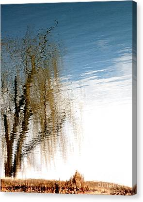 Materialization Of Nature Canvas Print by Steven Milner