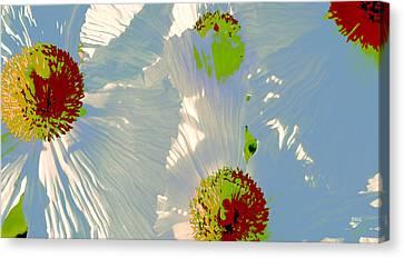 Canvas Print featuring the photograph Matilija Poppies Pop Art by Ben and Raisa Gertsberg