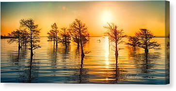 Mattamuskeet Sunrise 9103 Canvas Print by Dan Beauvais