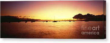 Maui Boat Harbor Silhouette Canvas Print by Carl Shaneff - Printscapes