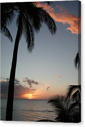 Maui Sunset Canvas Print by Dustin K Ryan
