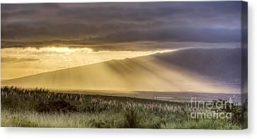 Maui Sunset God Rays Canvas Print by Dustin K Ryan